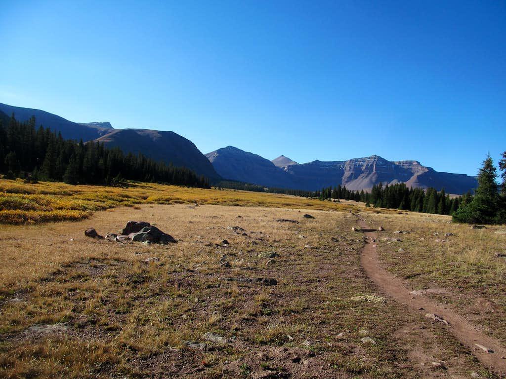 trail to Kings Peak