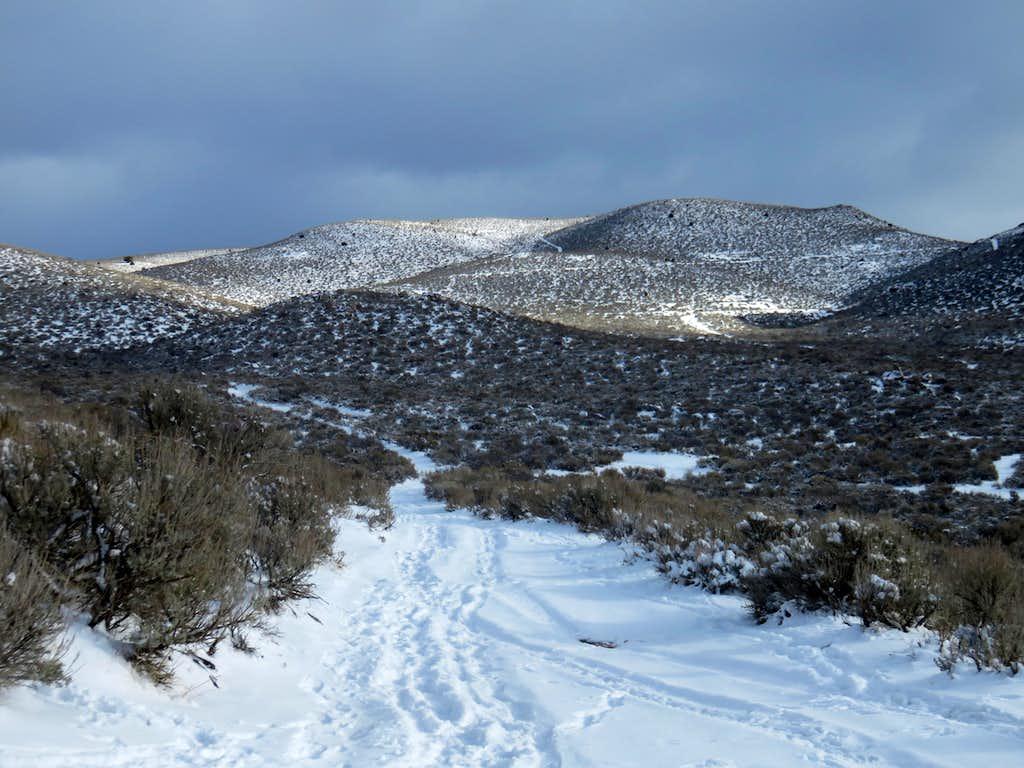 Cottontail Mountain - Christmas 2015