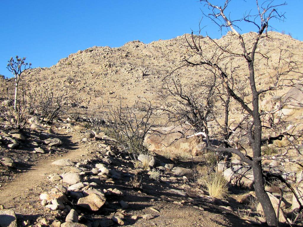 Valley between the hills