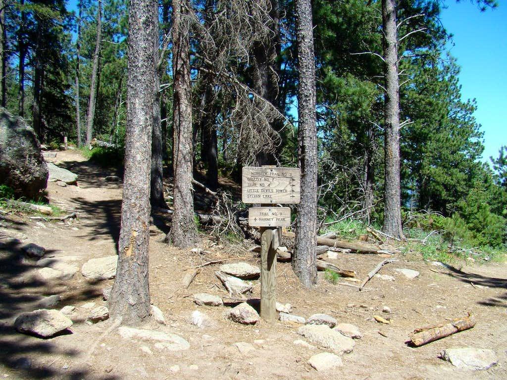 Black Elk Peak Trails Junction