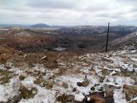 Snowy Cacti