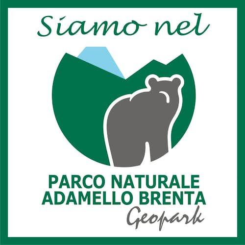 Logo of Parco Naturale Adamello - Brenta