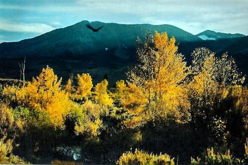 Condor, aspens and Mt. Wood from Rush Creek