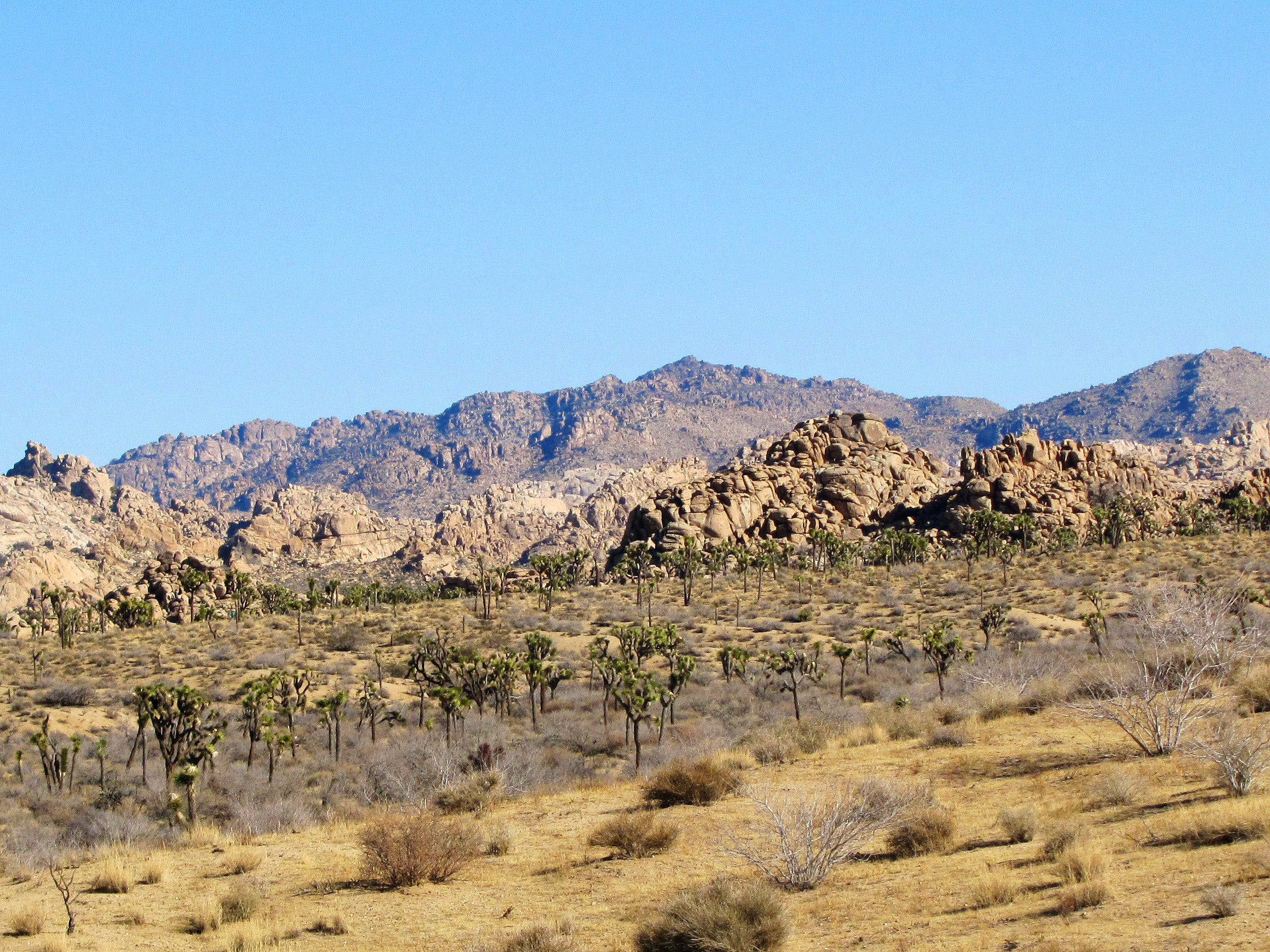 Quail Springs, Panorama, Samuelsons Rock Loop