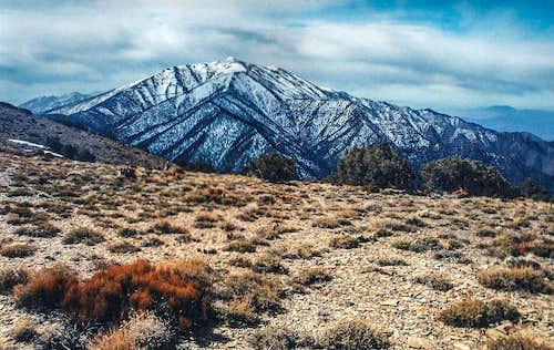 Panamint Range from Wildrose Peak