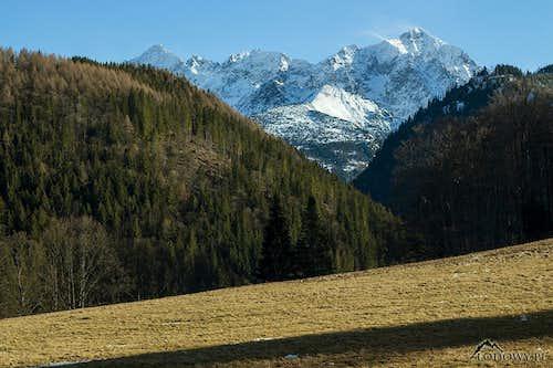 Tatranska Javorina