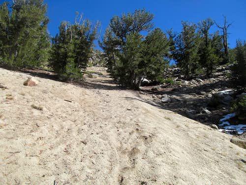 sandy trail towards saddle