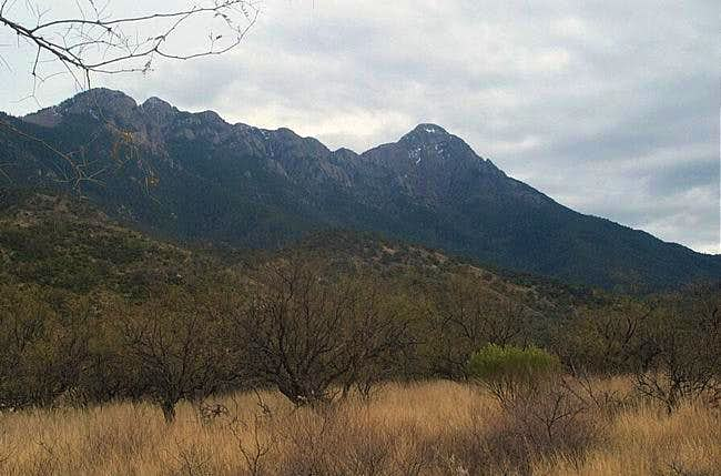 View of Mt. Wrightson on...