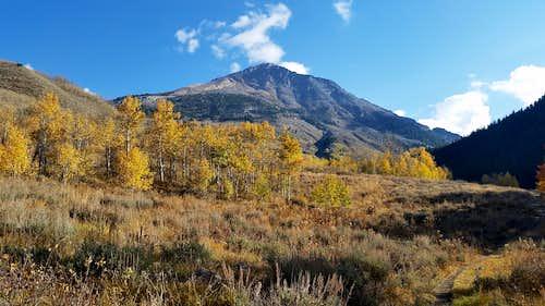 Cobb Peak...