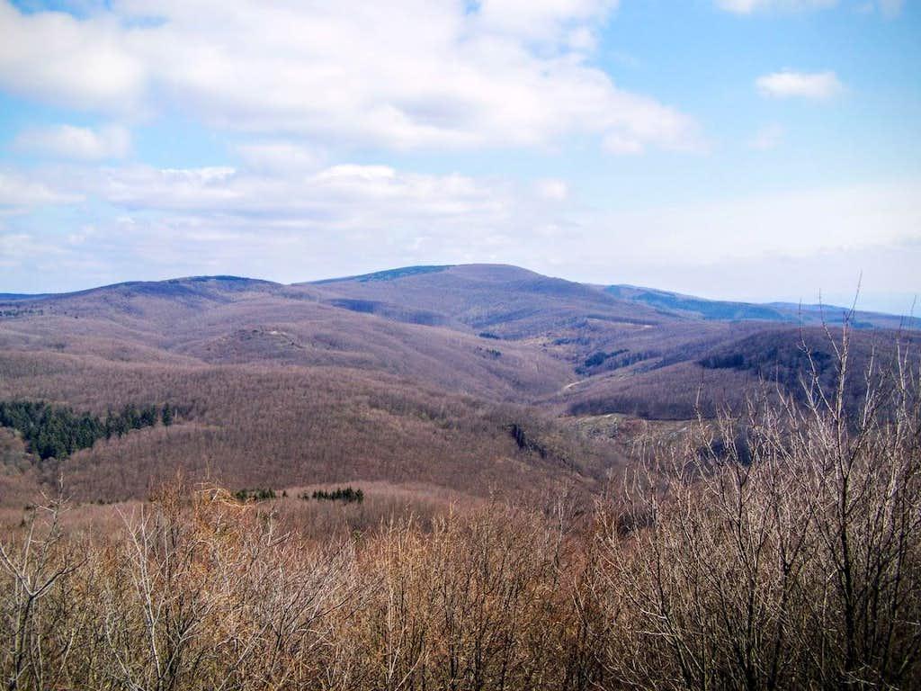 Češljakovački vis - view from west