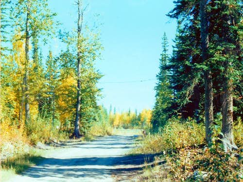 Tanana Valley Road