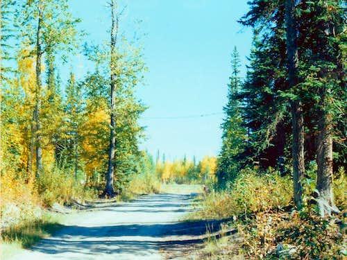 Tanana Valley Road