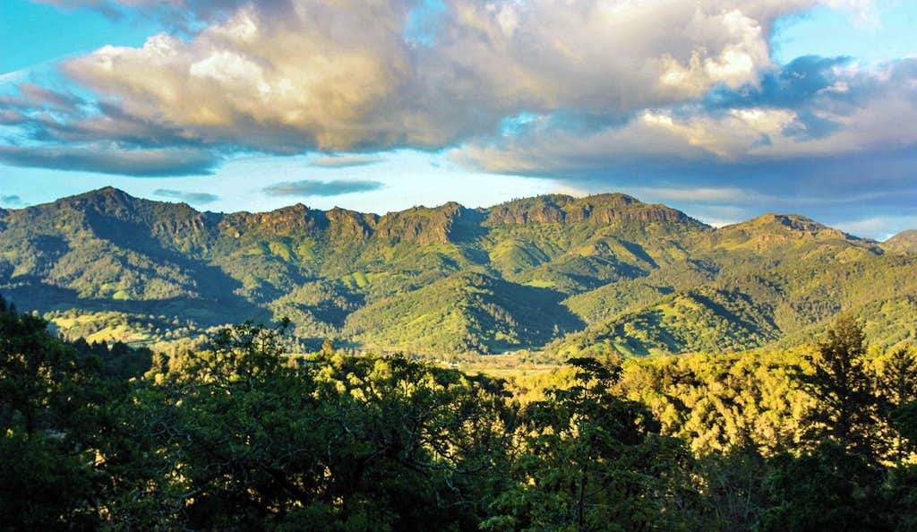 The Palisades, Napa Valley