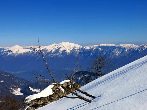 Cornetto and Monte Stivo seen from the summit slopes