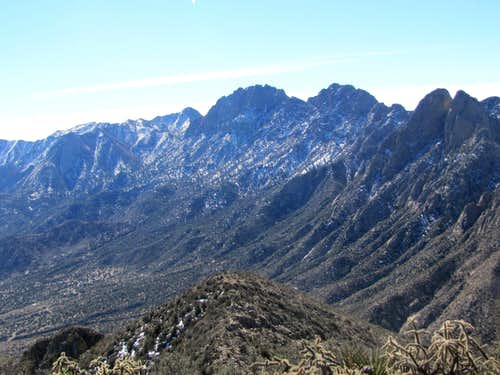 Organ Peak, Organ Needle, Flat-Top & Rabbit Ears
