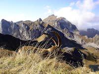 Wildlife in Chablais massif