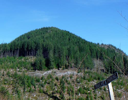 Cedar Butte from the trailhead