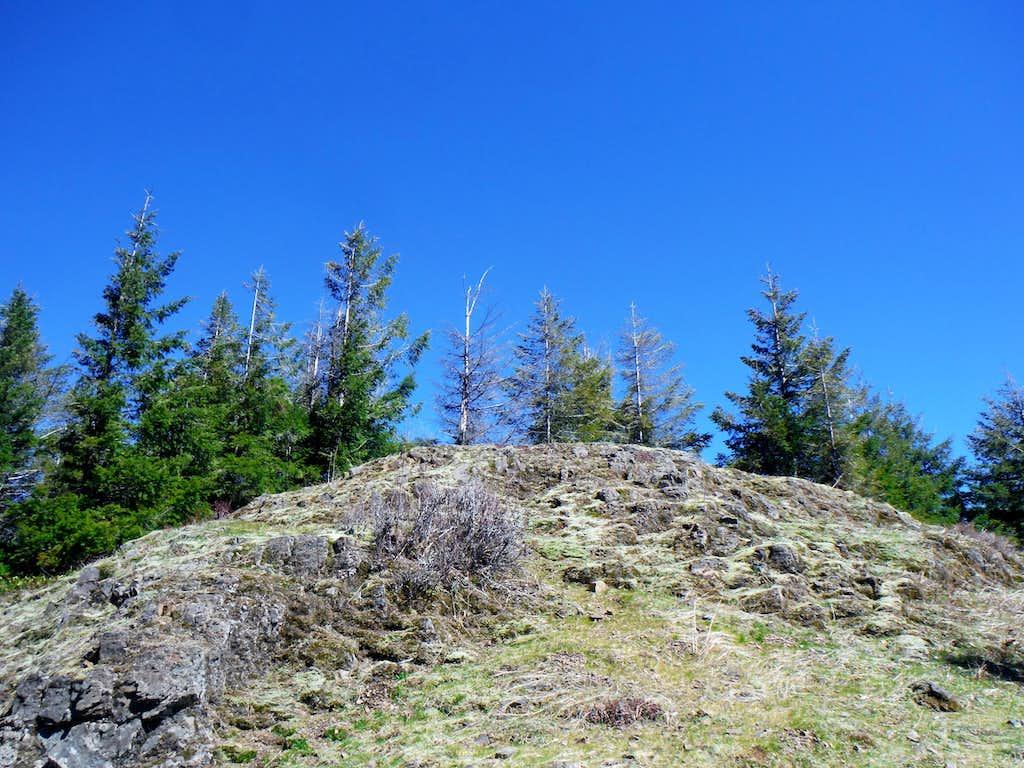 The summit area of Cedar Butte