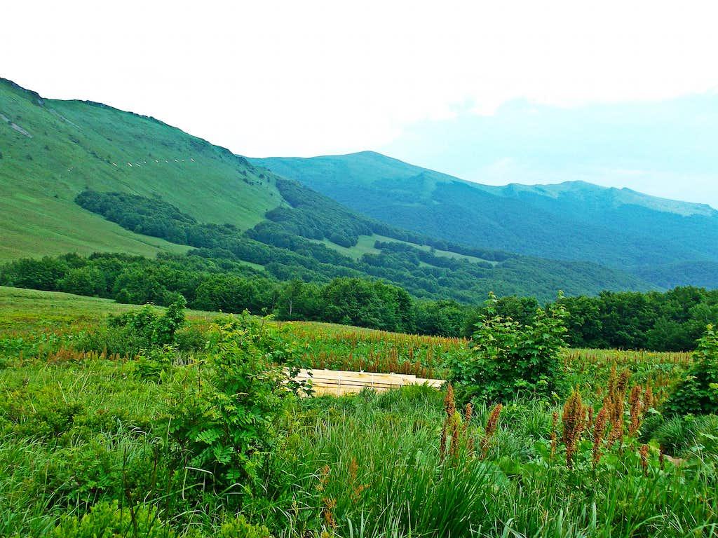 Green Path of Polonyna.. Photo Taken from Przełęcz Goprowska/ Goprowska Pass
