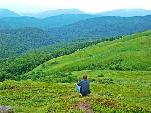 Green land of silence that's where the Bieszczady Angels wander..