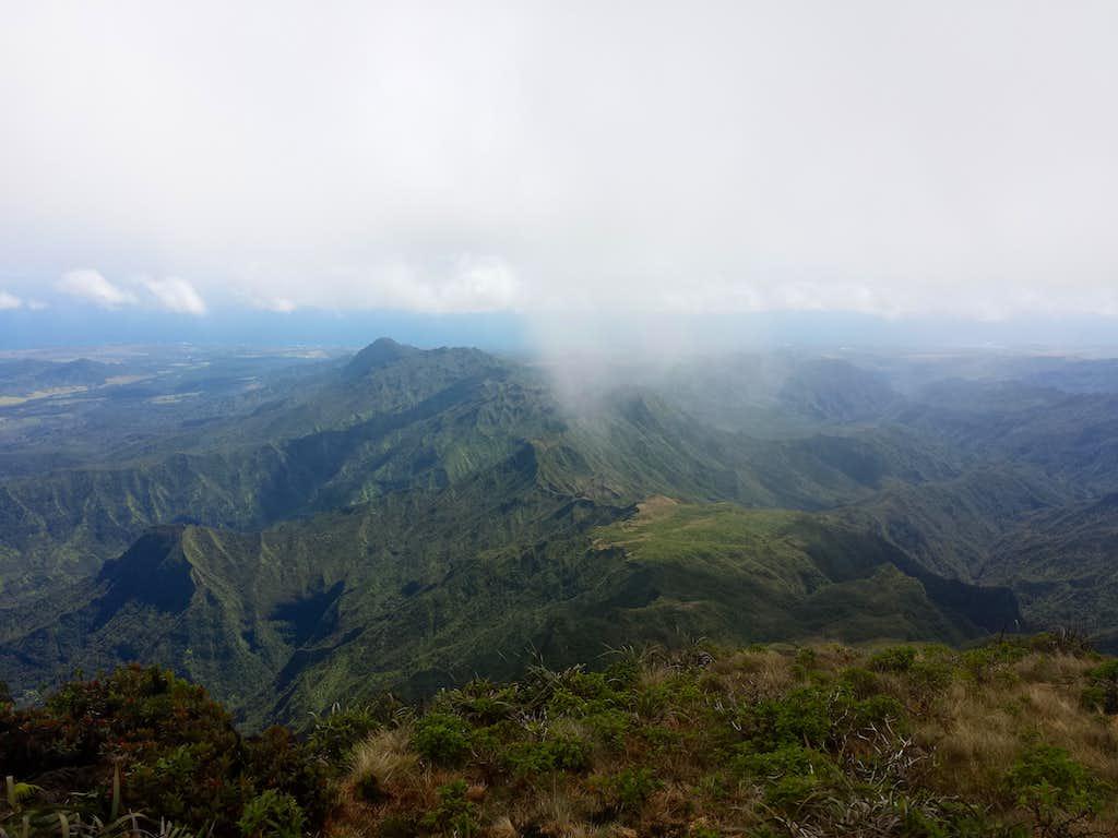 Lihue-Koloa Forest Reserve looking South from Kawaikini