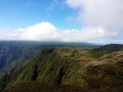 Alakai Wilderness Preserve from Kawaikini