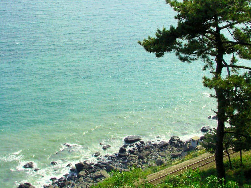 Moontan Trail Ocean View