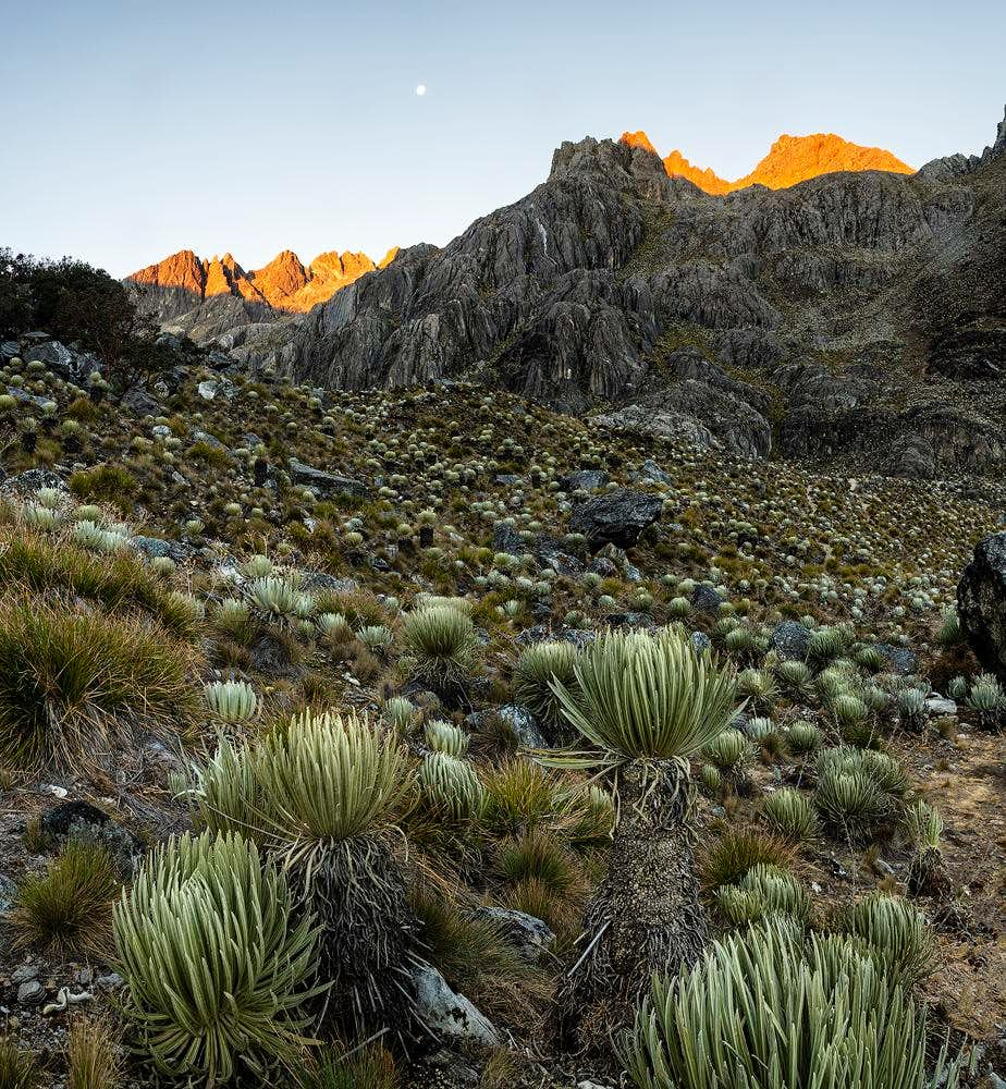 Sierra Nevada National Park - Venezuela