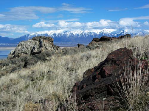 Antelope Island grass/rocks