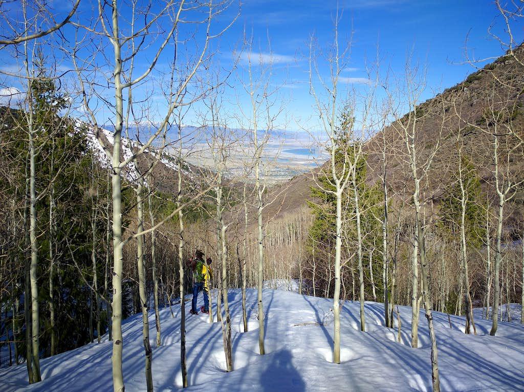 Snowshoeing in Bates Canyon