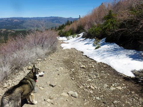 Descending the summit road