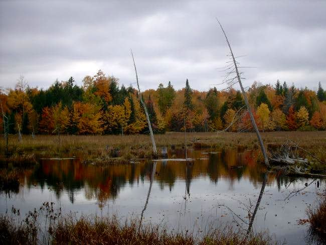 Unnamed Pond in Baraga County