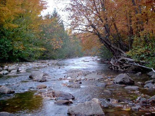 Huron River East Branch,...