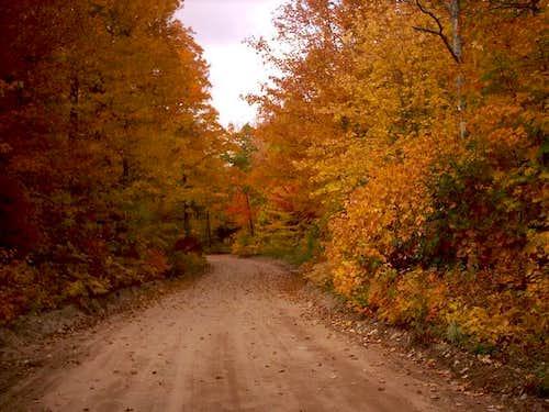 AAA Road near...
