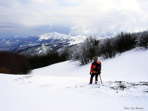 Alpe di Succiso seen from Rocca Pianaccia