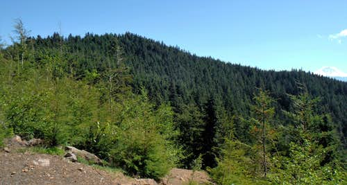 Sally's Summit (Predator Peak)
