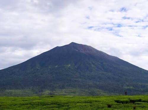Mount Kerinci Sumatera