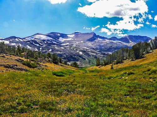 False White Mountain and White Mountain
