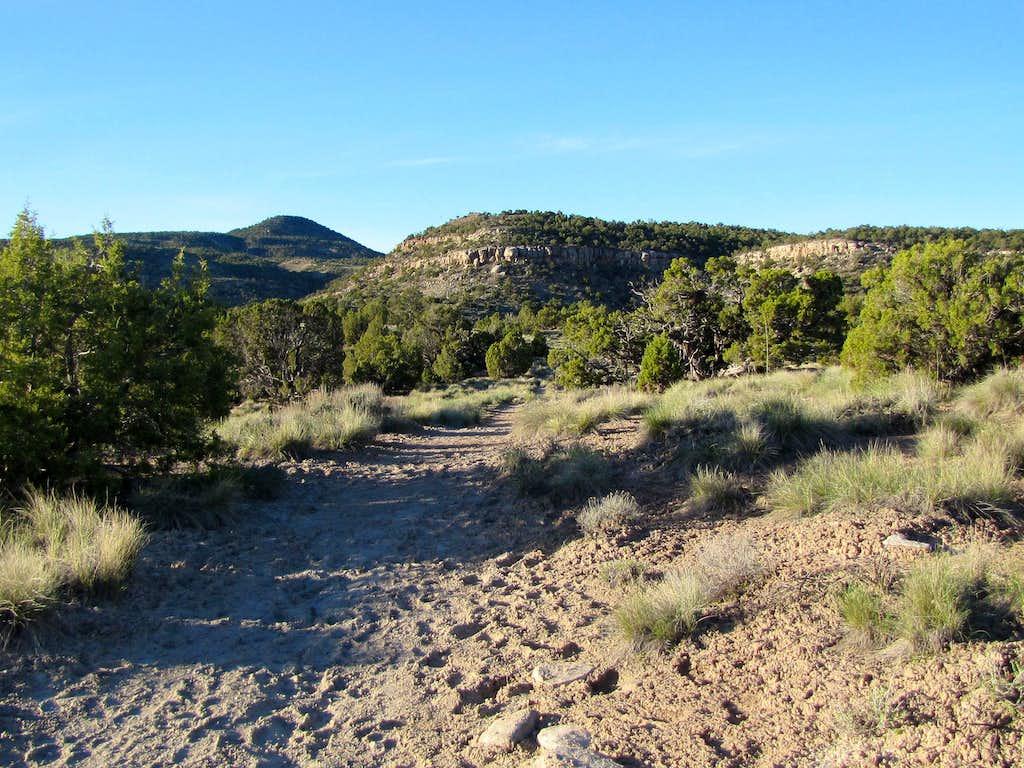 On Black Ridge Trail
