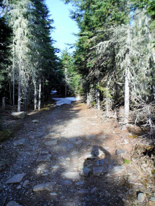 Kabeyun Trail - First Look