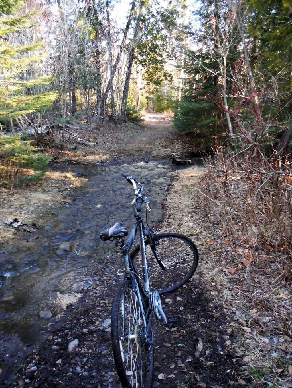 In Trail Stream