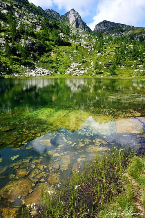 Clear water in front of Cima del Masnee
