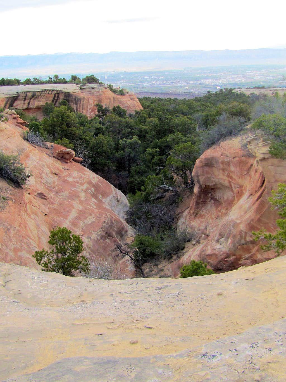 Edge of slickrock canyon