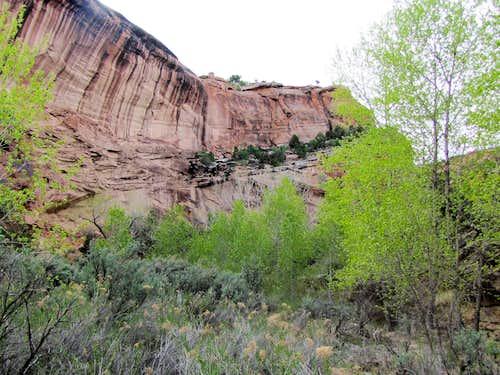 Echo Canyon