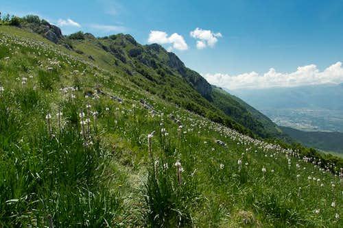 Monte Rotondo (Morrone)