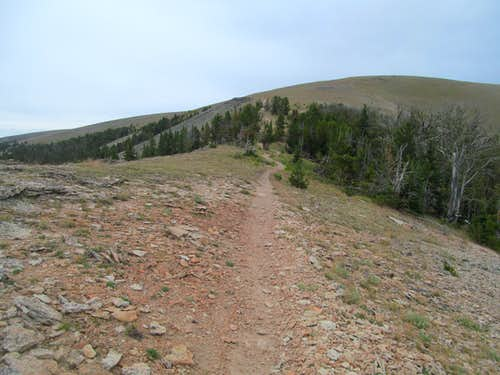the path up Big Baldy