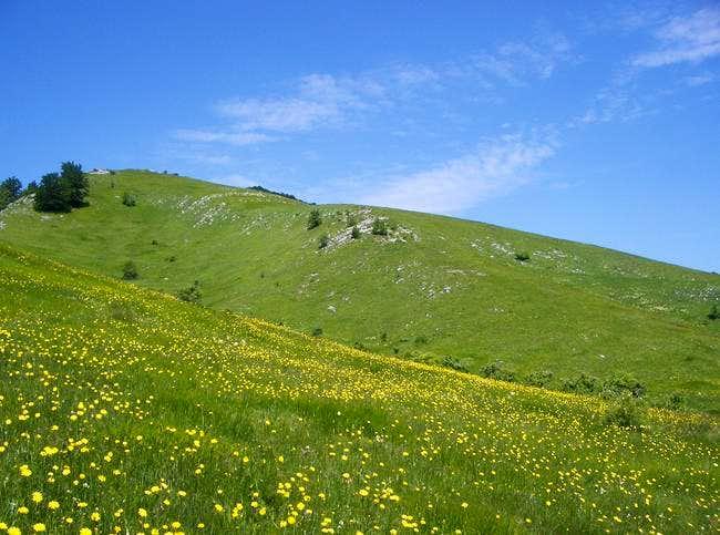 Countryside NE of Postak;...