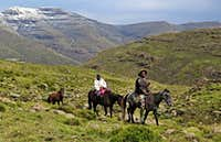 lesotho horsemen