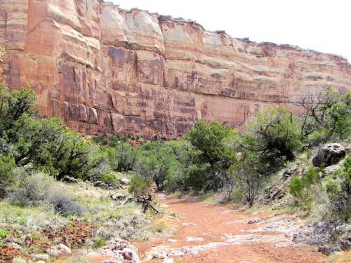 Gold Star Canyon
