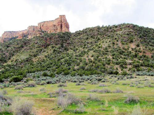 Near White Rocks Trailhead
